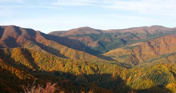 autunno-foreste-casentinesi